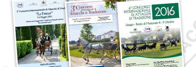 CIAT du trophée Italien d'attelage de tradition en 2016