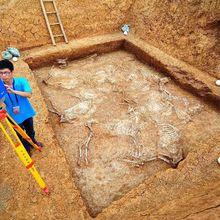 Des fosses sacrificielles découvertes dans de vieilles tombes chinoises de 3000 ans