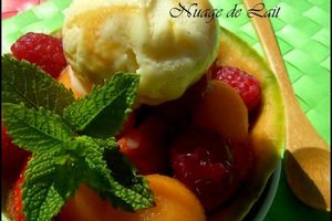 Melon Gourmand