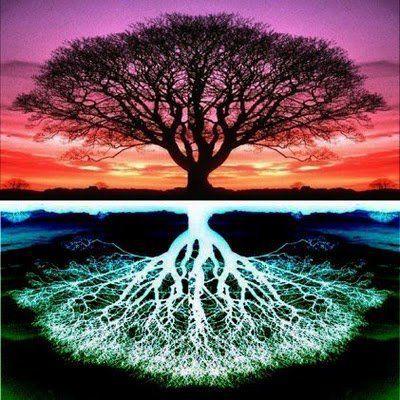 le cerveau ou les galaxies ont le même schéma, matière grise et matière noire se ressemblent .... et si vous vous occupiez de votre arbre des possibles ou de vos impossibles :)