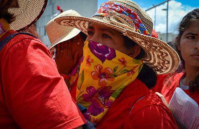 Brésil : Dans le Paraná, des paysannes du MST préparent des dons de nourriture pour la Journée de la femme