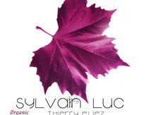"Artwork Album ""Organic"" de Sylvain Luc - Dreyfus Jazz"