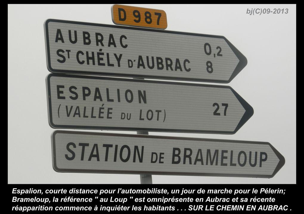 ETAPE 5 - chemin vers NASBINALS - 27 Km -   Pays d'AUBRAC