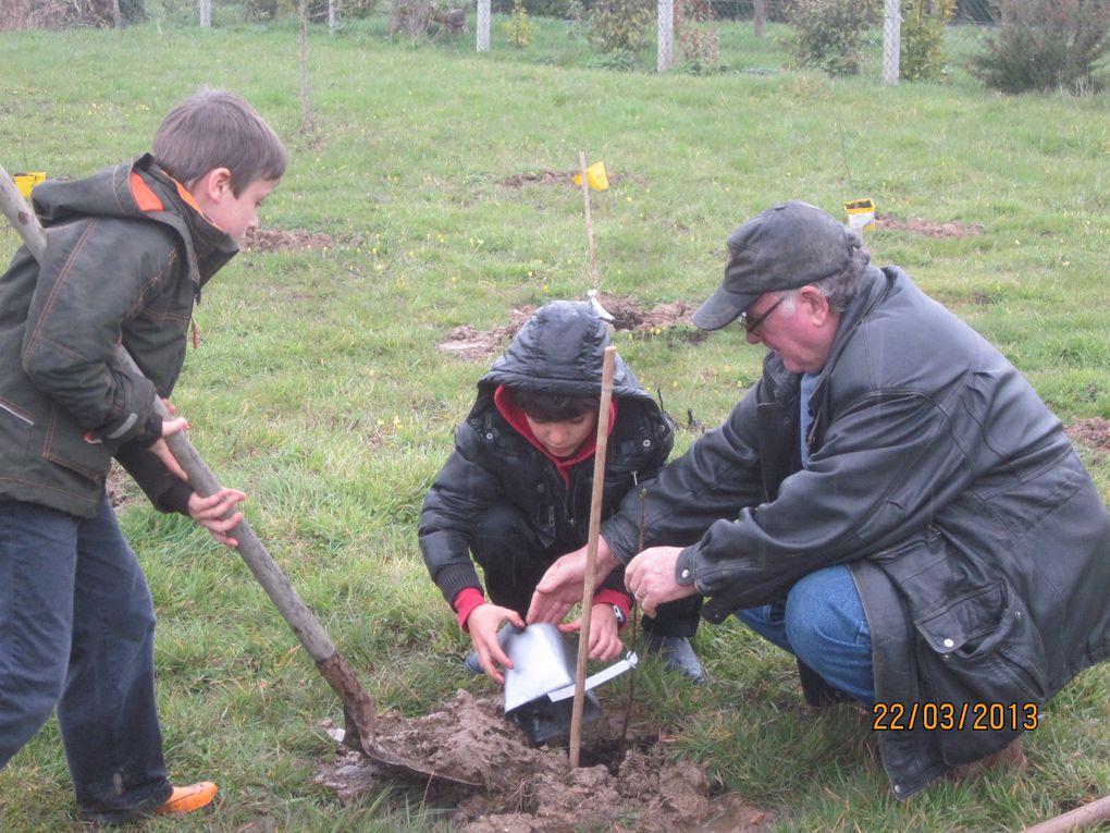 le 22 mars,22 enfants ont planté 150 arbres.