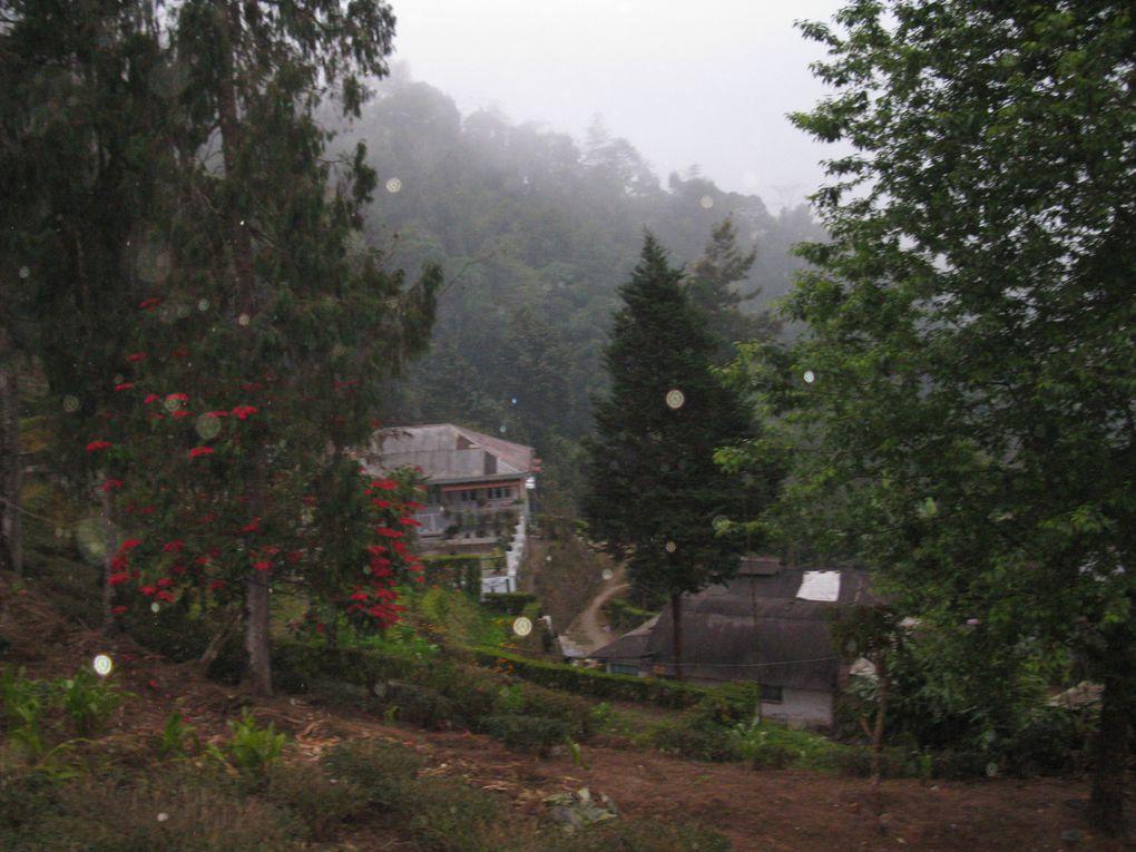 Album - Sikkim-varanasi-agra