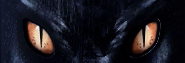 Les yeux du dragon - Stephen king