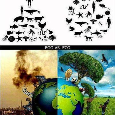 Égoïsme contre écologie