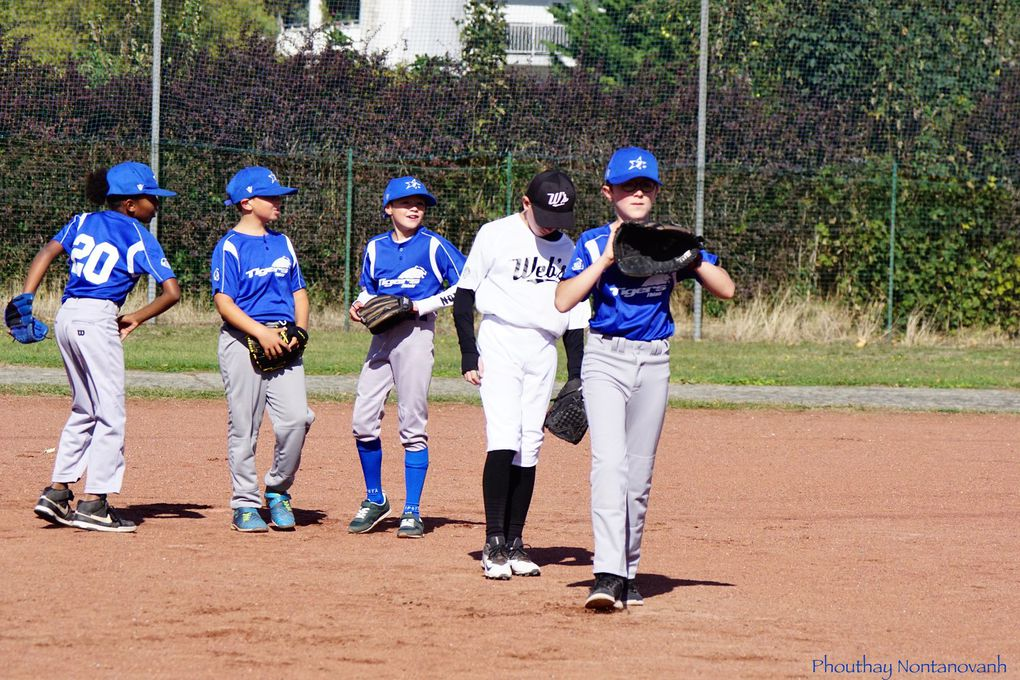 12U - CD77 - Entente Web's et Tigers vs les Templiers
