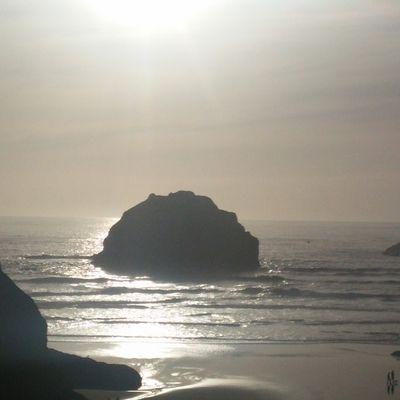 OREGON : Wild Pacific Coast (Jour 30 à 34 ; Kilomètre : 7857)
