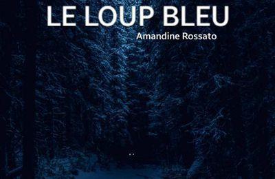 Le Loup Bleu - Le trou des enfers