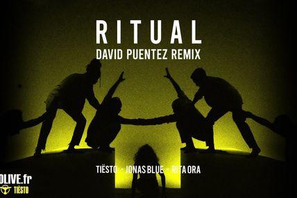 Tiësto x Jonas Blue ft. Rita Ora - Ritual ( David Puentez Remix )