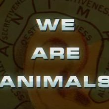 We are animals [Court métrage]