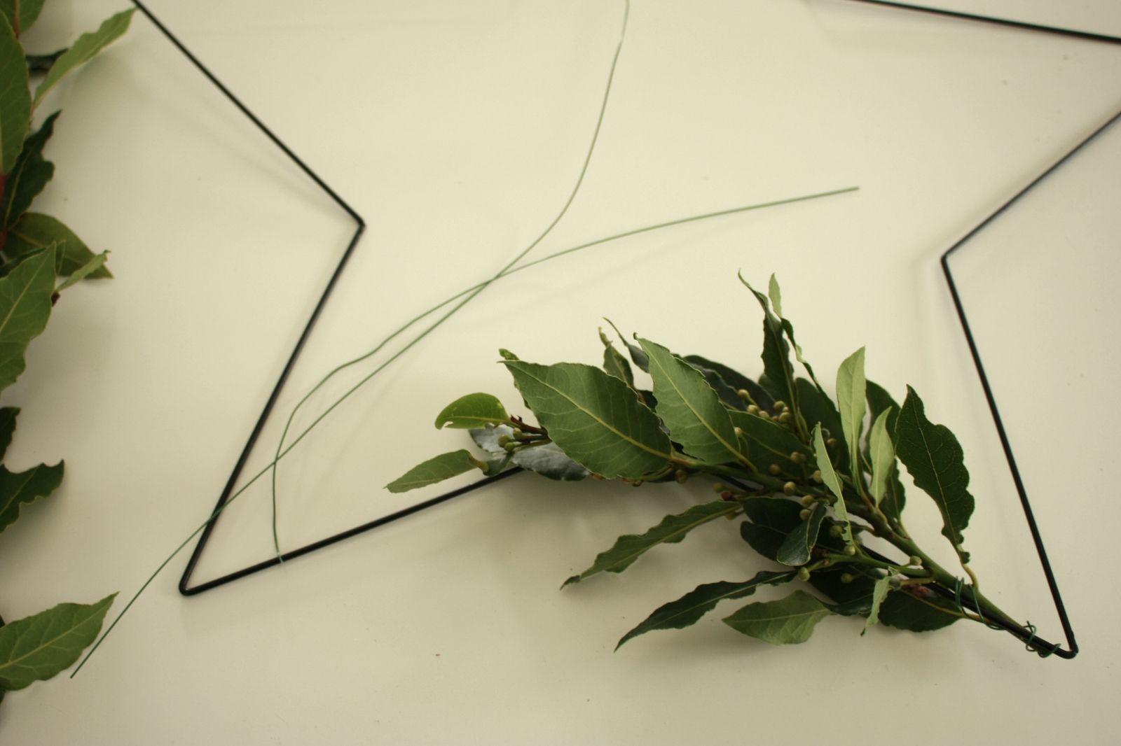 Des branches de laurier pour une couronne de Noël hand made !!!!