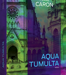 Aqua tumulta de Pierre Caron: polar mystique!