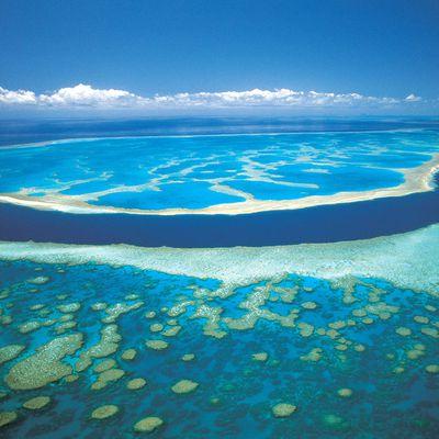 7.Great Barrier Reef