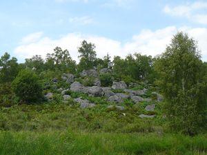 Sortie 5A et F: Fontainebleau