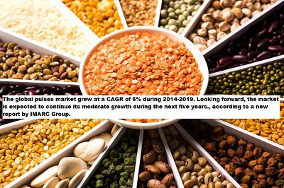 Pulses Market Report 2020: Global Industry Overview, Growth Rate, Trends, Opportunities and Forecast