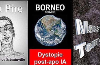 *LA PIRE & BORNÉO & MESSAGE TEMPOREL* Patrice de Fréminville* Auto-éditions* par Martine Lévesque*