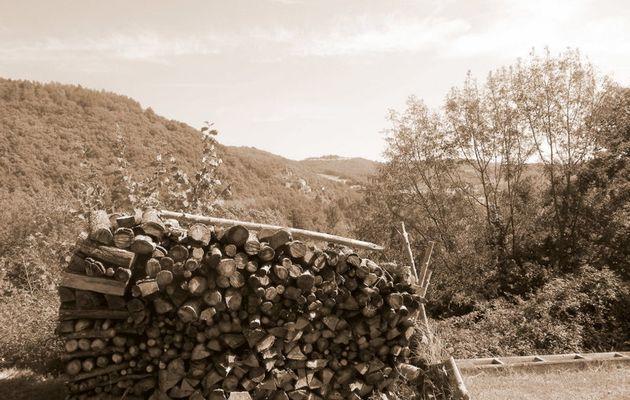 A Villeneuve-sur-Tarn, on « faisait son bois »(2).