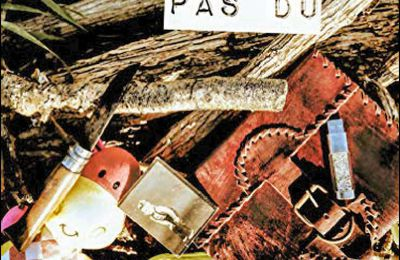 *ILS N'AURAIENT PAS DÛ* Katell Curcio* Éditions Librinova* par Cathy Le Gall*
