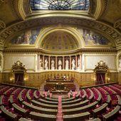 """Le Sénat """"éloigné des excès du pouvoir populaire"""""""