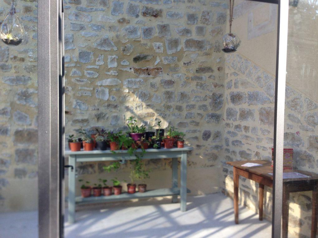 Boutures au profit d'Open Gardens / Jardins Ouverts - 4 photos