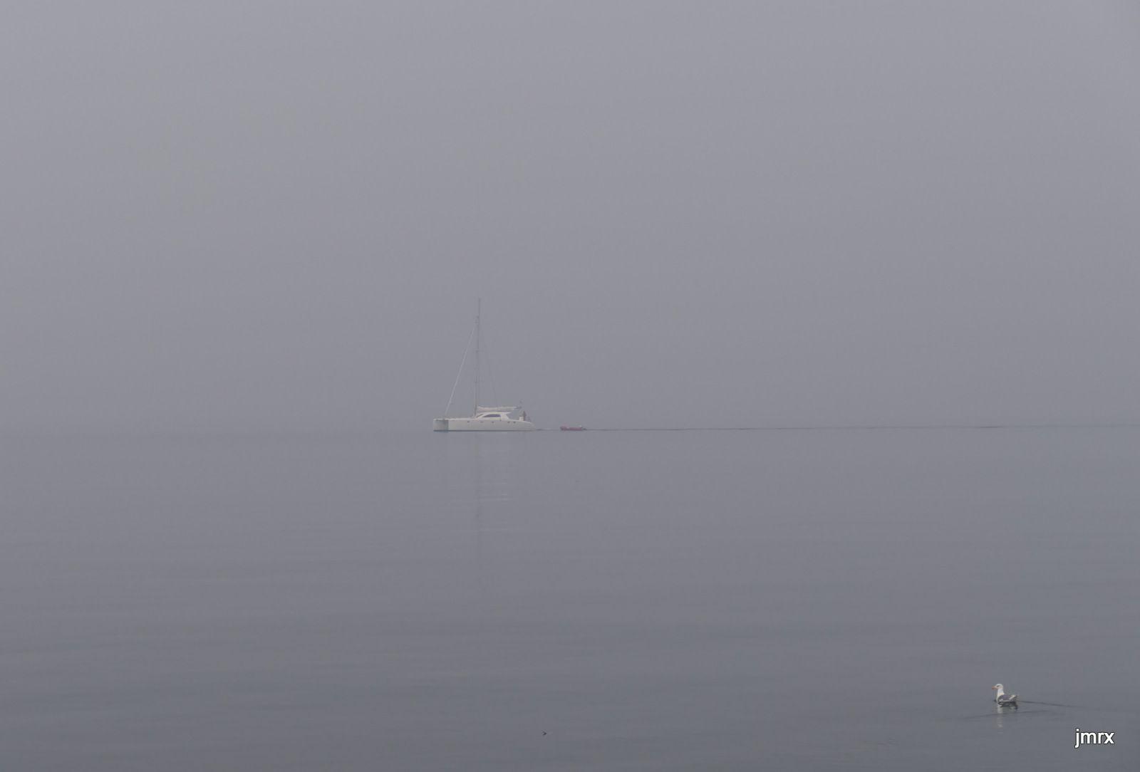 Navigation dans le brouillard et à contre courant.