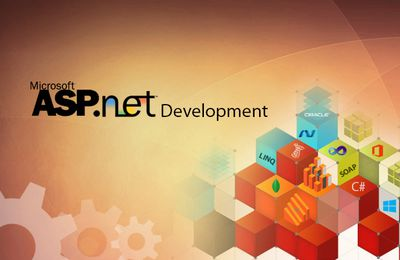 Reason to Hire an ASP.NET Programmer and find your Best Bet