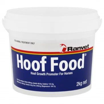 Does Your Horse Need Gut Health Support?