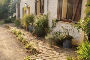 4 septembre : plantations devant la maison en sol sec