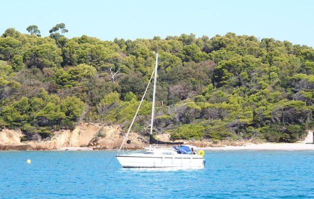 Boating and water sports in the French Mediterranean: what has changed as of June 15