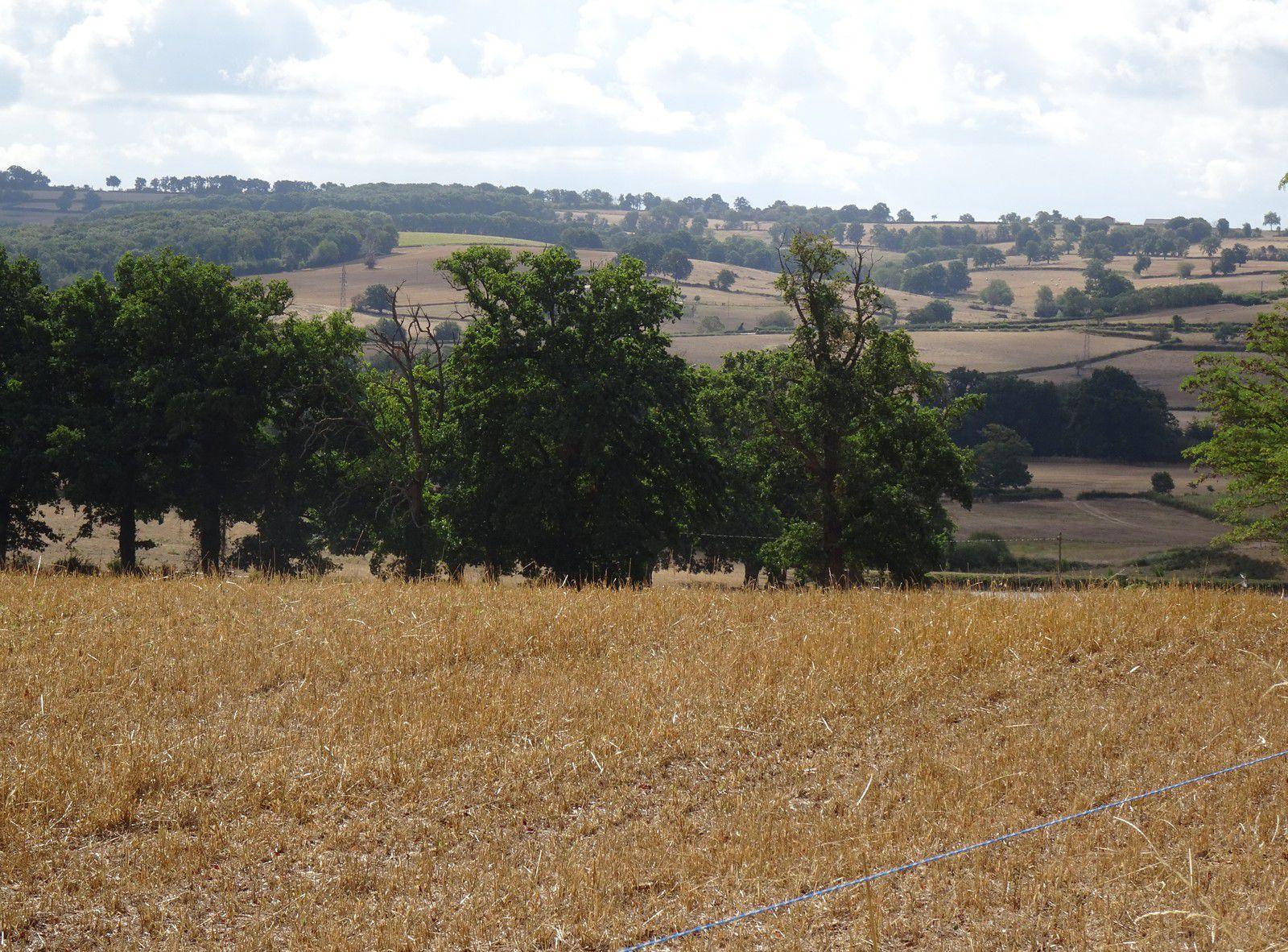 Le Tour de Bourgogne - Etape 7 - Bourbon-Lancy/Cercy-la-tour - 69,3 km
