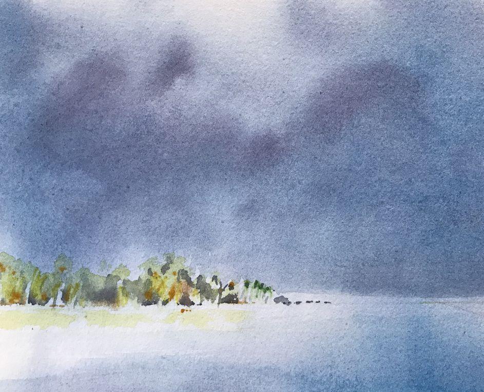 TUAMOTU - Tikehau - Fakarava hirifa