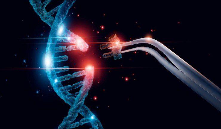 ¿El virus SARS-CoV-2 causante de la enfermedad Covid-19 ha sido fabricado? Parte 1 - ¿Es posible crear un virus?