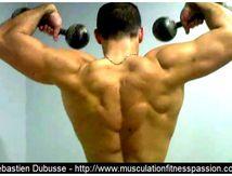 La musculation pour les cyclistes, Sébastien Dubusse, blog Musculation/Fitness Passion