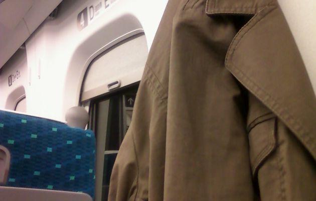 Le shinkansen, la grande classe !
