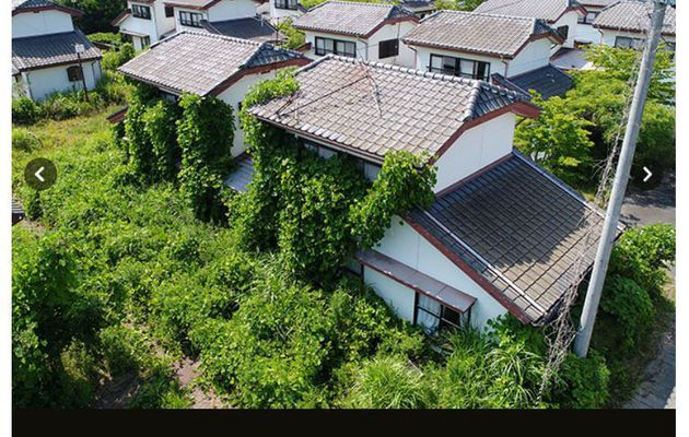 Seven summers later...in Fukushima