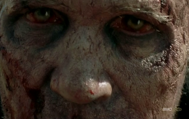 Critiques Séries : The Walking Dead. Saison 3. Episode 15.