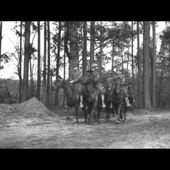 Activities of the 31st Division, Camp Wheeler, Macon, Georgia, February 1918, 1934