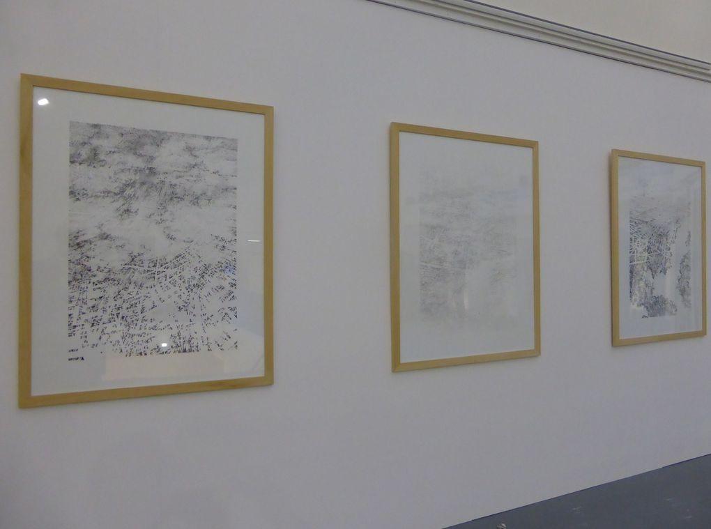 Prix Dauphine pour l'art contemporain © Le Curieux des arts Gilles Kraemer, 23 mars 2015