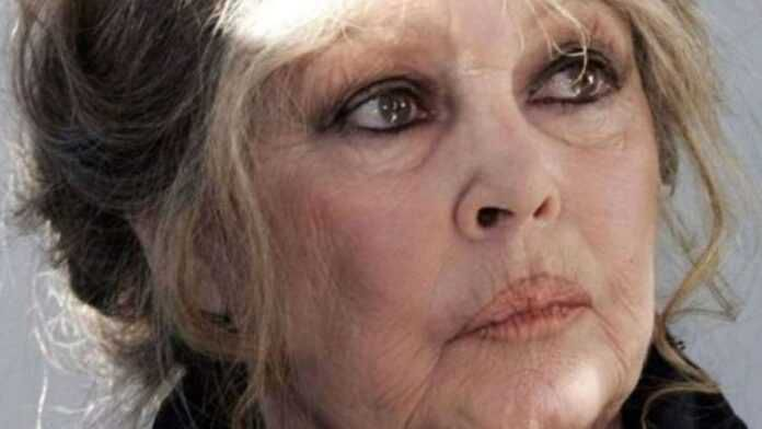 Brigitte Bardot dénonce une horreur dans laquelle « les Algériens ne se reconnaissent pas »