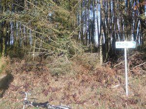 Les panneaux de la véloroute et du chemin balisé pour marcheurs. La dernière photo est de Patrick Harel.