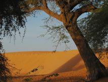 Le nord du Burkina Faso