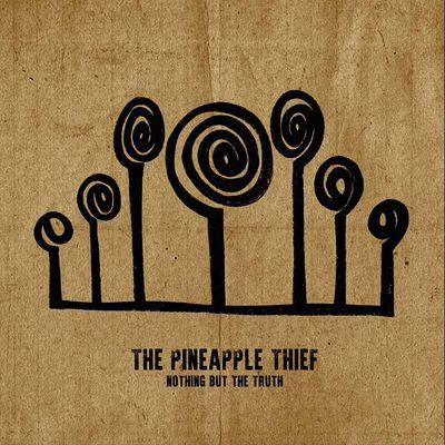 2021 - The Pineapple Thief - Nothing But The Truth [24-48]