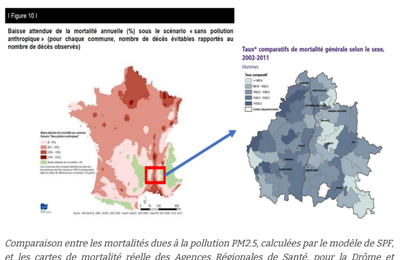 400.000 morts par an en Europe à cause de la pollution de l'air ? De petits éclaircissements de M. Philippe Stoop sur Atlantico