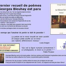 Le dernier recueil de Georges Bleuhay