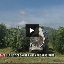 Glyphosate interdit : concours de bidonnage au journal de 20 heures de France 2