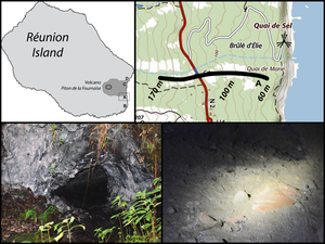 """On the left, Karstrama Vulcan - on the right, Piton de La Fournaise - Karstrama vulcan settlement - Location of the """"Brulé des Citrons Galets"""" lava tunnel and its entrance - Crabs' place of life at the end of the tunnel - photo J.- P. Le Guelte - a click to enlarge"""