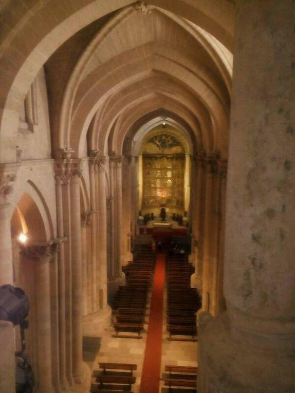 Salamanque, les deux cathédrales.
