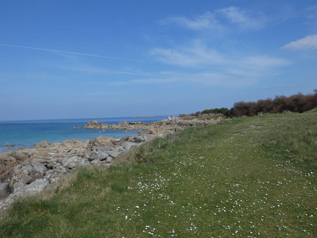 Le printemps : de Port Neuf à Moguériec